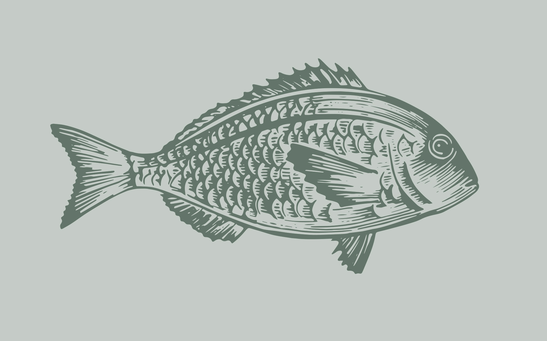 Genesis Wines fish illustration